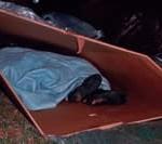 Girls sleep in box shelters to raise awareness of homelessness