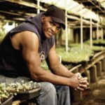 Growing Power Works to Empower the Community with Food and Resources
